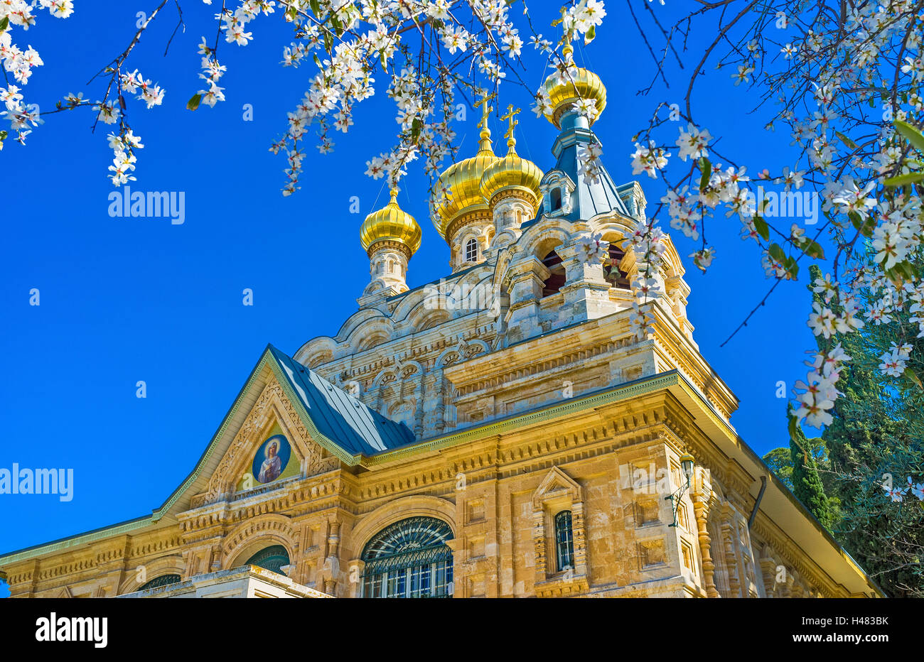 The golden 'onion' domes of the Russian Orthodox Church of Mary Magdalene through the white flowers of the - Stock Image