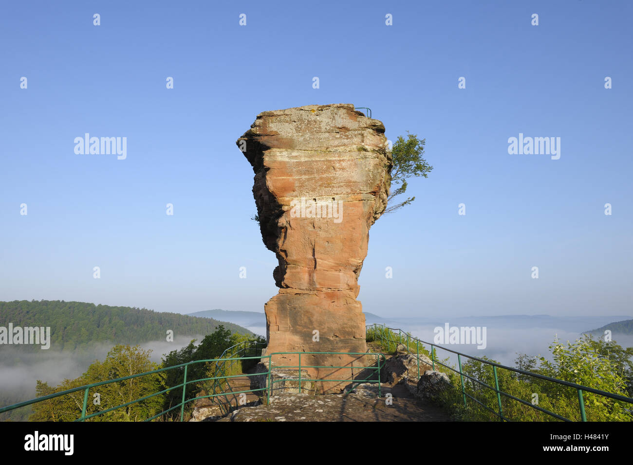 Tower of the castle ruin Drachenfels, 'molar', lookout, Busenberg, Palatinate Forest, Rhineland-Palatinate, - Stock Image