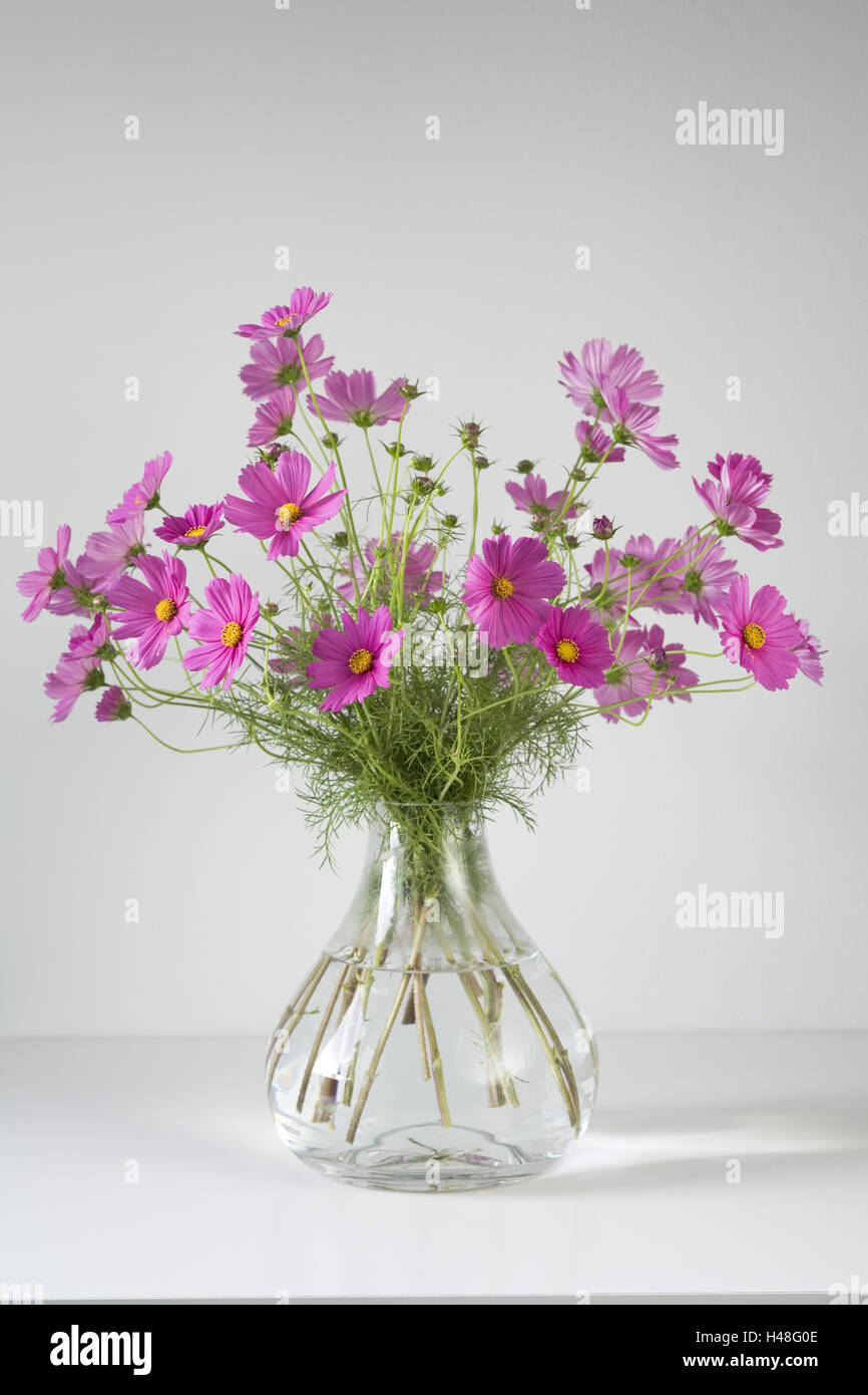 Bouquet, cosmos in glass vase Stock Photo: 123119374 - Alamy