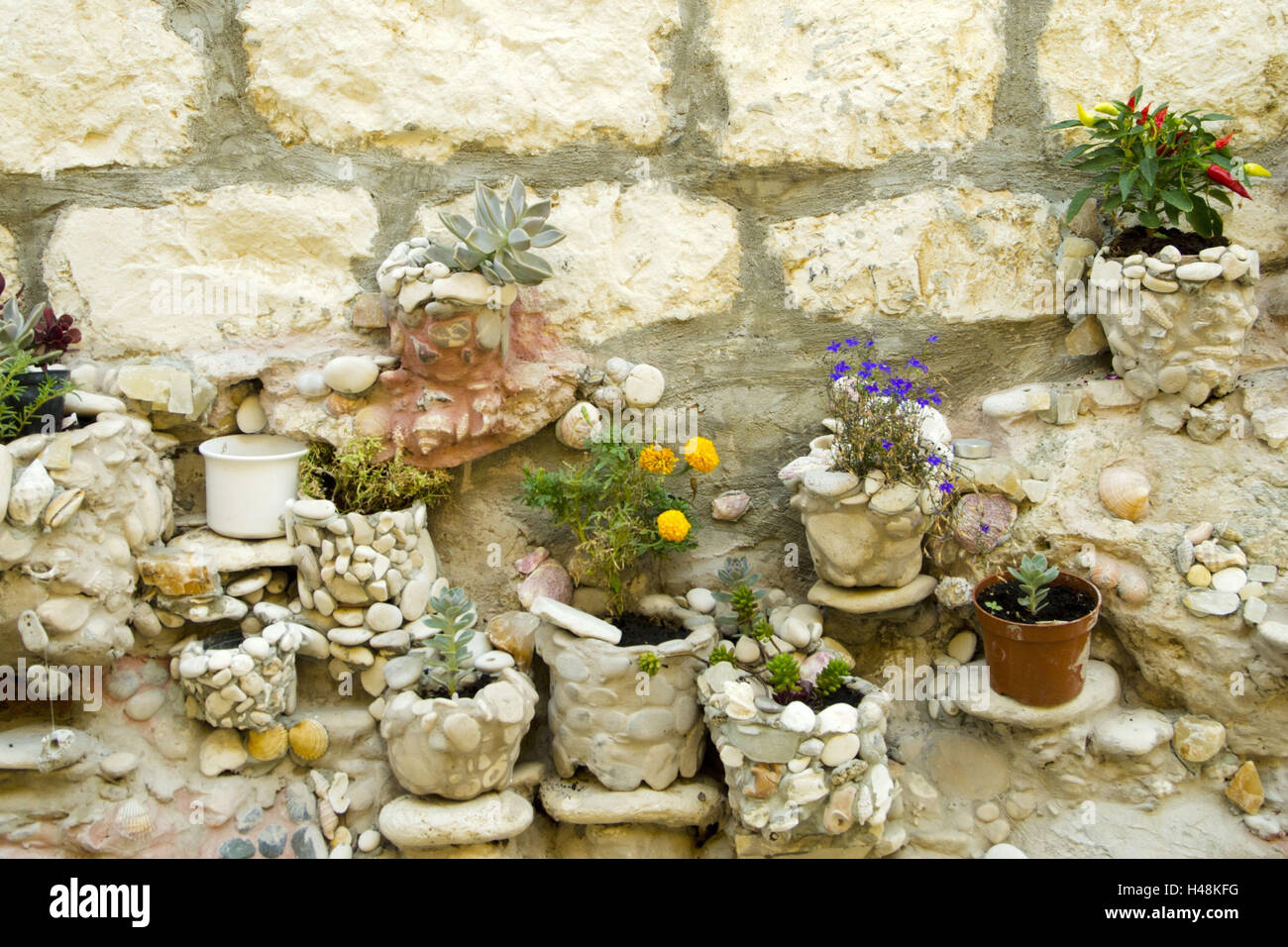 Croatia, Dalmatia, Vis, flower decoration in of a house, - Stock Image