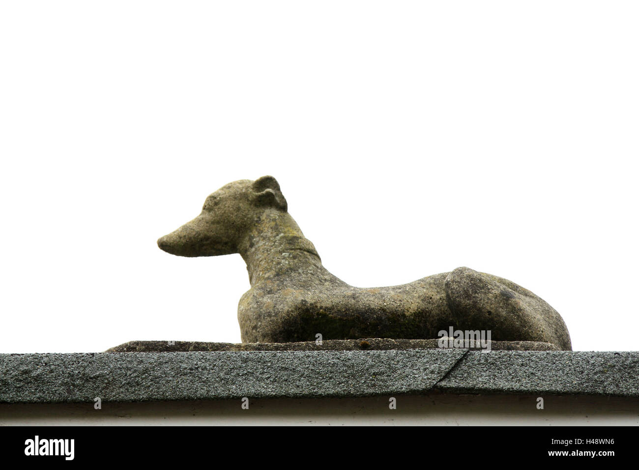 More poorly, stone figure, dog, lie, animal figure, stone dog, figure, adornment, decoration, product photography, - Stock Image