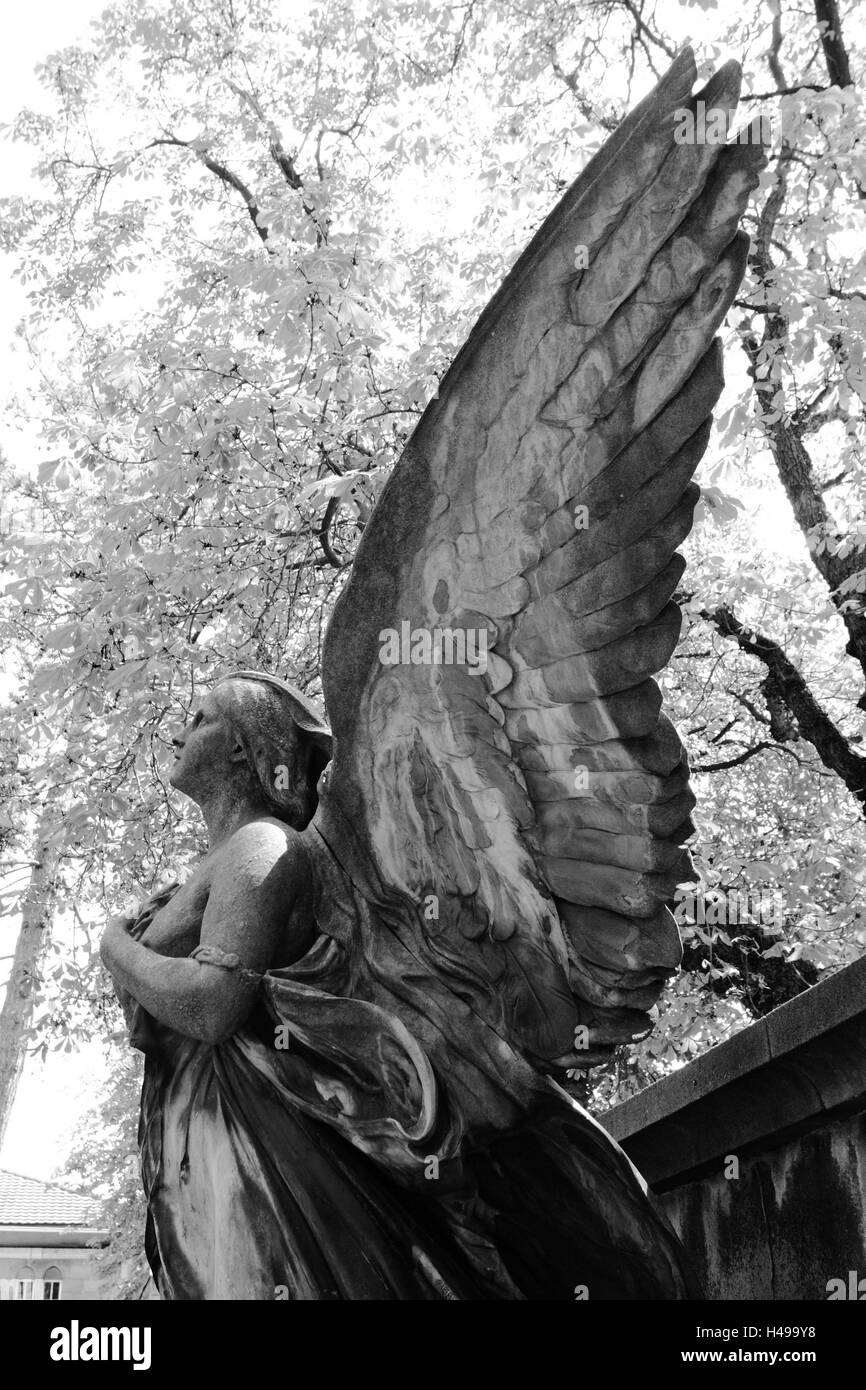 grave yard, grave, statue, angels, sidewards, s/w, - Stock Image