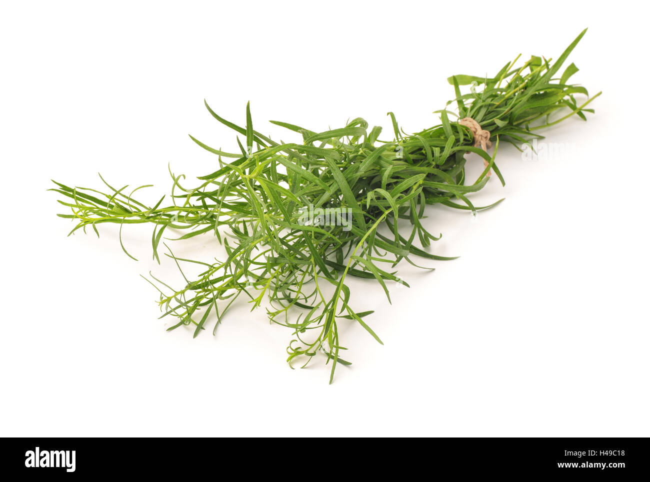 Bunch of fresh tarragon herbs isolated on white - Stock Image