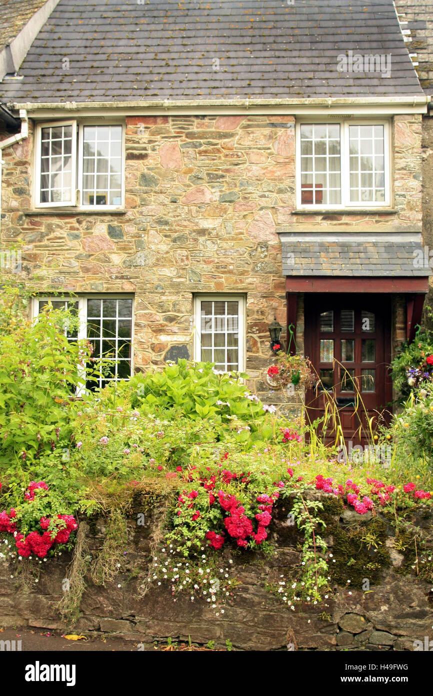 UK, Devon, Ashprington, house, garden, summer, England, stone house, residential house, wall, climbing plants, shrubs, - Stock Image