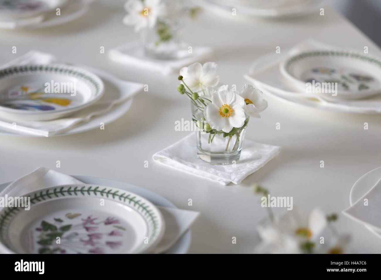 Laid table, plate, glasses with white Chinese anemones, - Stock Image
