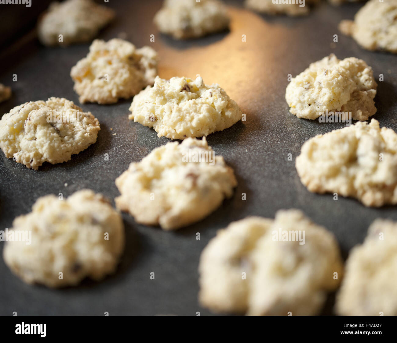 Baking sheet with fresh little places, close up, - Stock Image