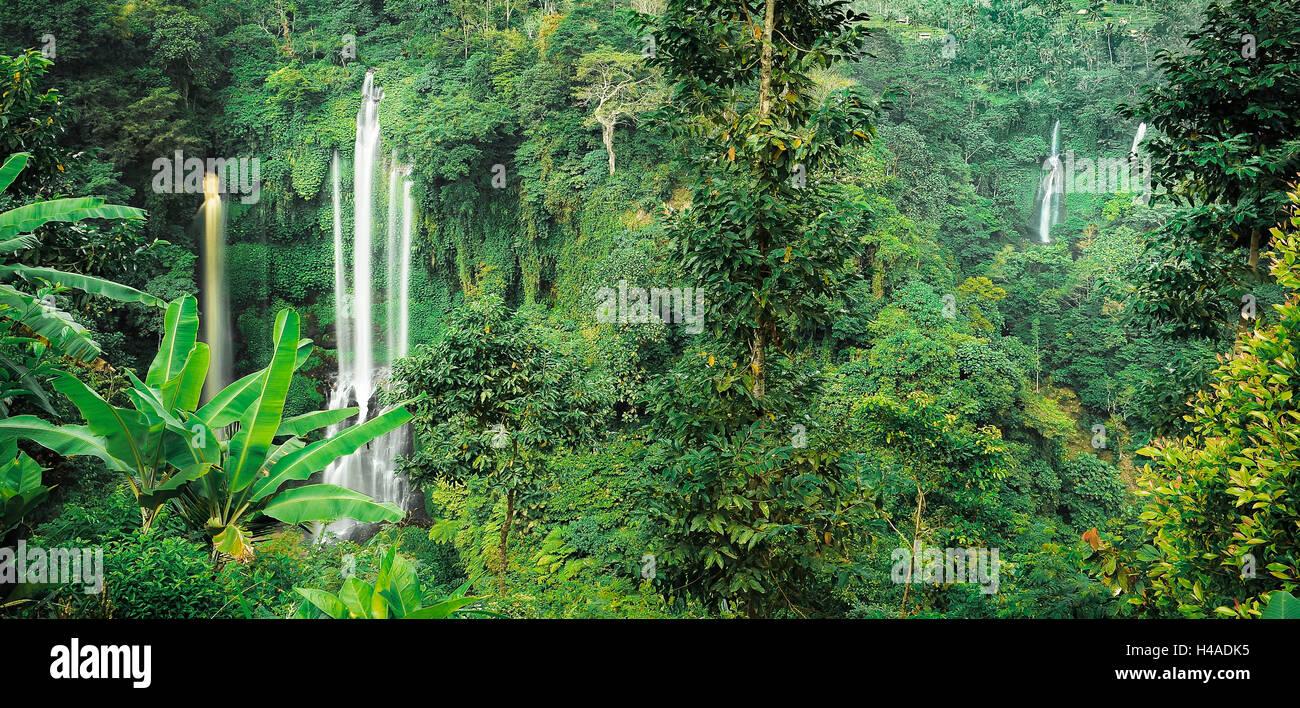 Indonesia, Bali, Sekumpul Waterfall, jungle, - Stock Image