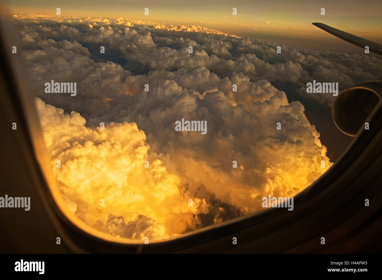 view from airplane window, Condor, aerial view, airplane, - Stock Image