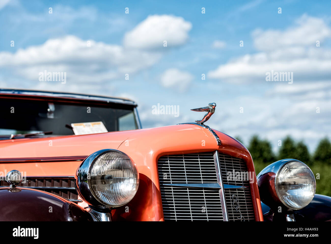 Germany, Schwetzingen, Classic gala, cooler front of an Auburn 852 Speedster, year of manufacture 1936, - Stock Image