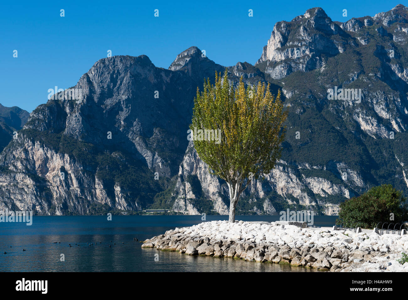 Lake Garda, Torbole, beach, Trentino, Italy, mountain lake, holiday region, relaxing, vacation Stock Photo
