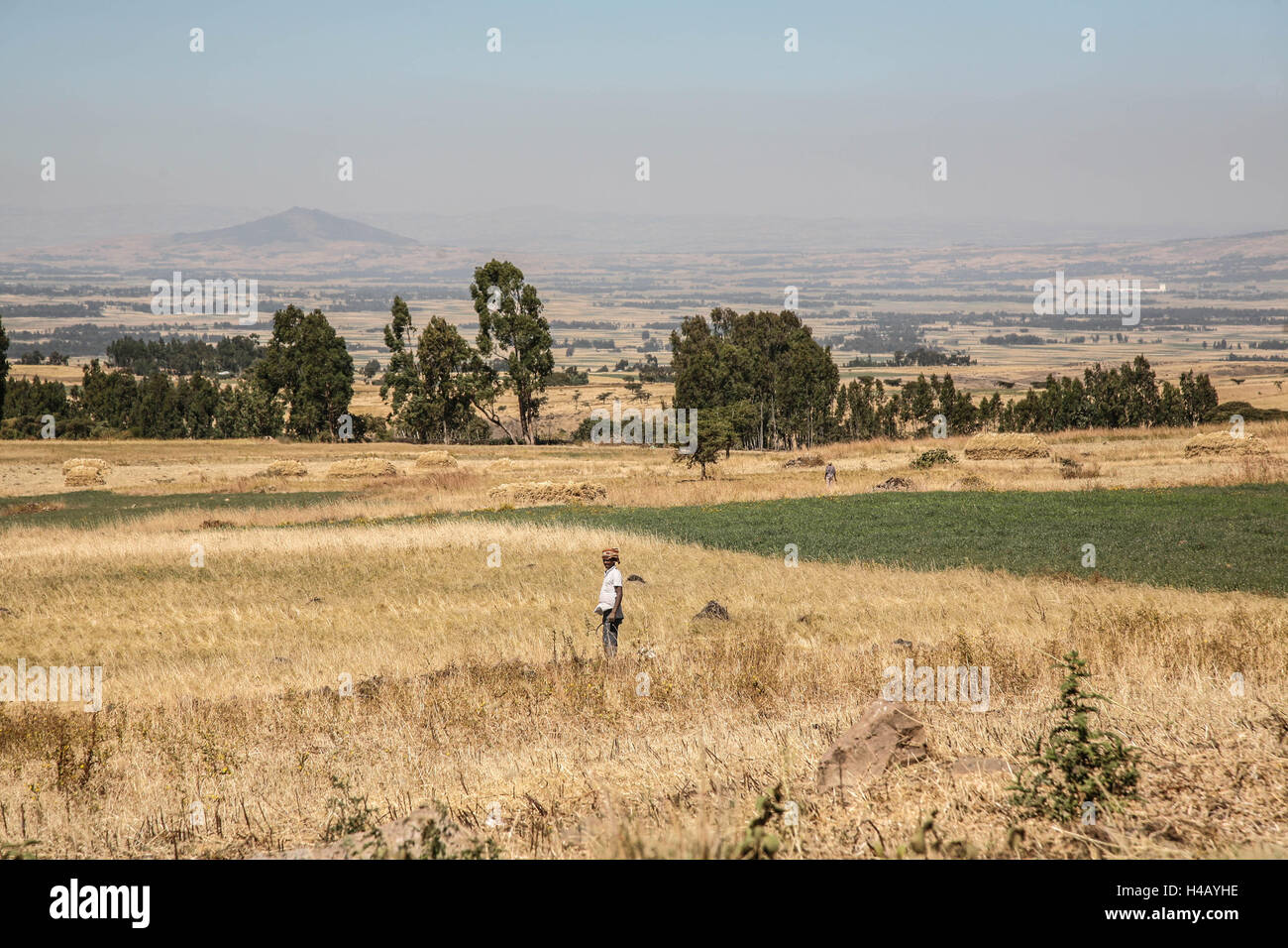 From Arba Minch to Addis Ababa Stock Photo