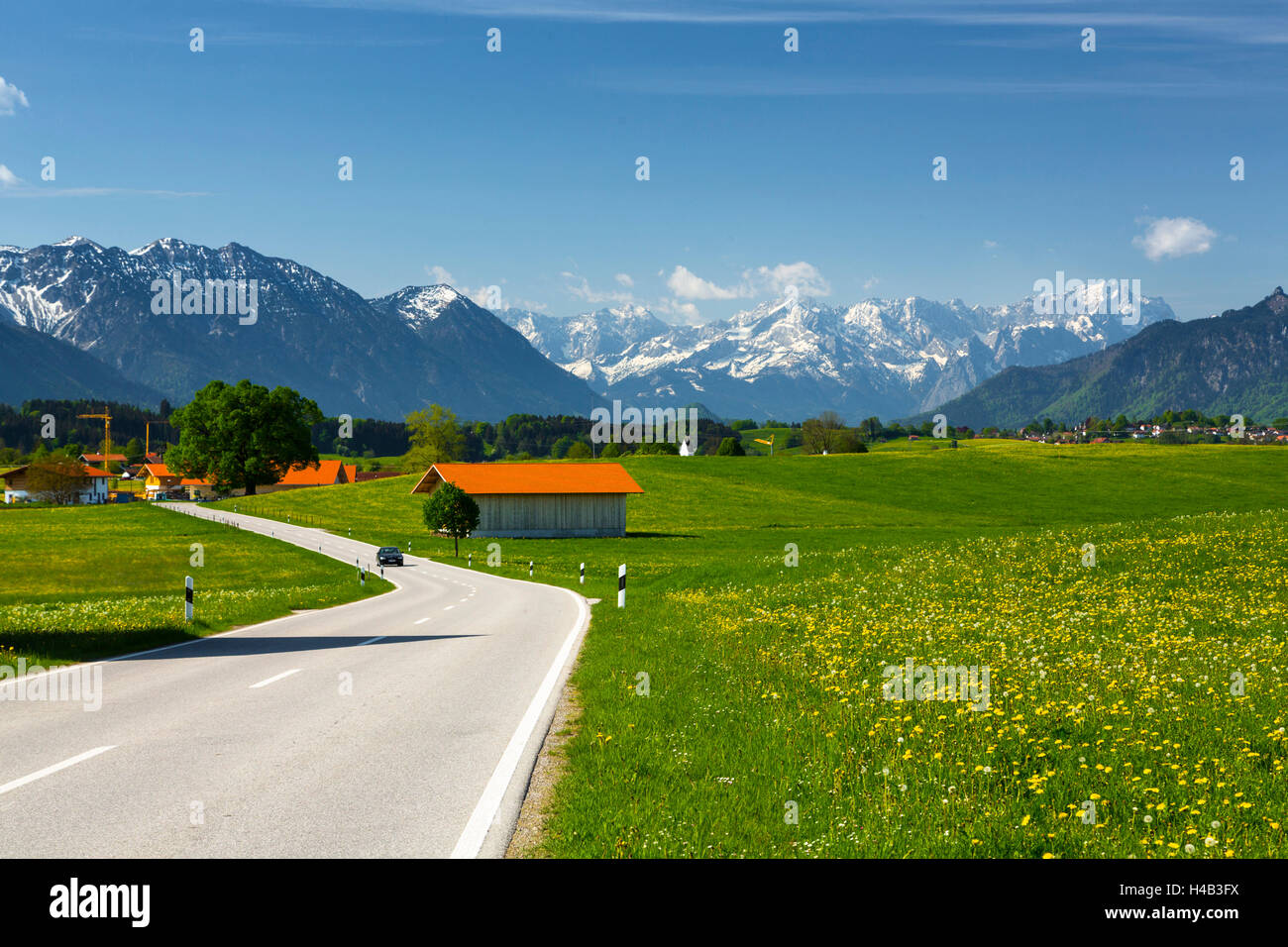 Germany, Bavaria, country road in spring - Stock Image