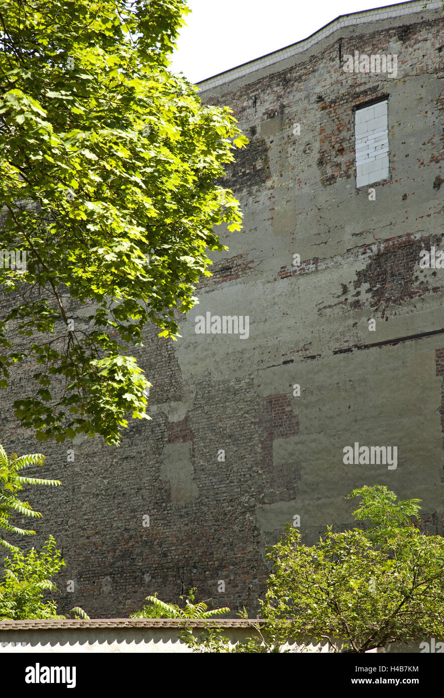More poorly, window, bricked up, tree, - Stock Image