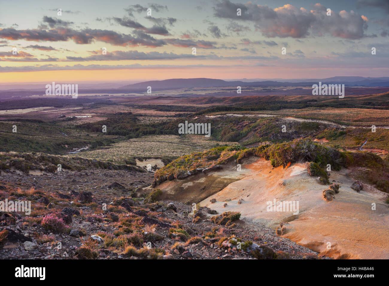 Tongariro National Park, Manawatu-Manganui, north Island, New Zealand - Stock Image