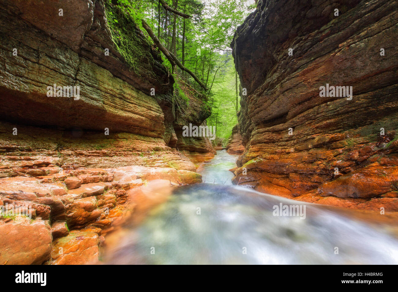 Rock formation at the Taugl, waterfall, Salzburg, Austria Stock Photo