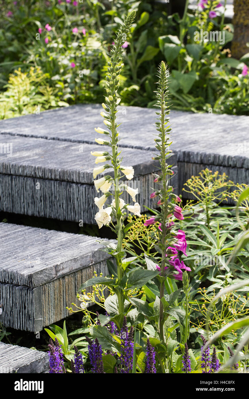 Steps made from hand-cut slate stacked together. The Brewin Dolphin Garden. RHS Chelsea Flower Show, 2015 - Stock Image