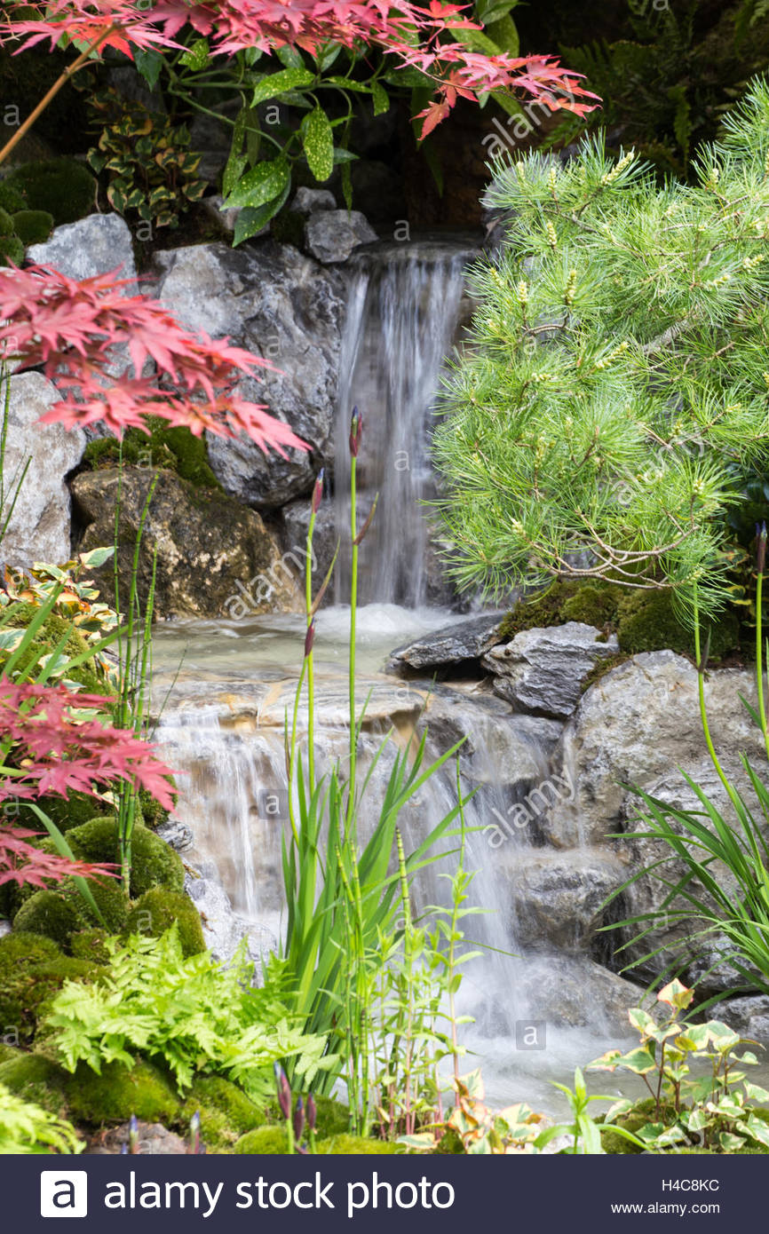 waterfall in Japanese garden of Acers, Irises and pincushion moss mounds. Edo no Niwa - Edo Garden, Chelsea Flower - Stock Image