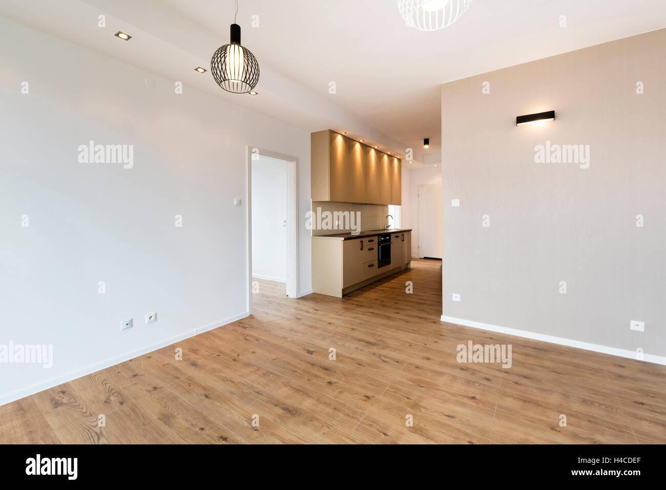 . New apartment  empty room with domestic kitchen interior design