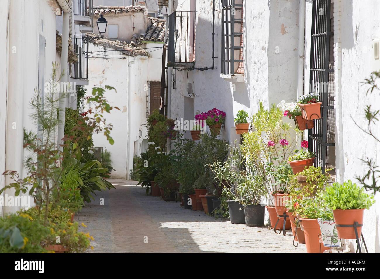 Street in Iznatoraf, Jaén Province, Andalusia, Spain - Stock Image
