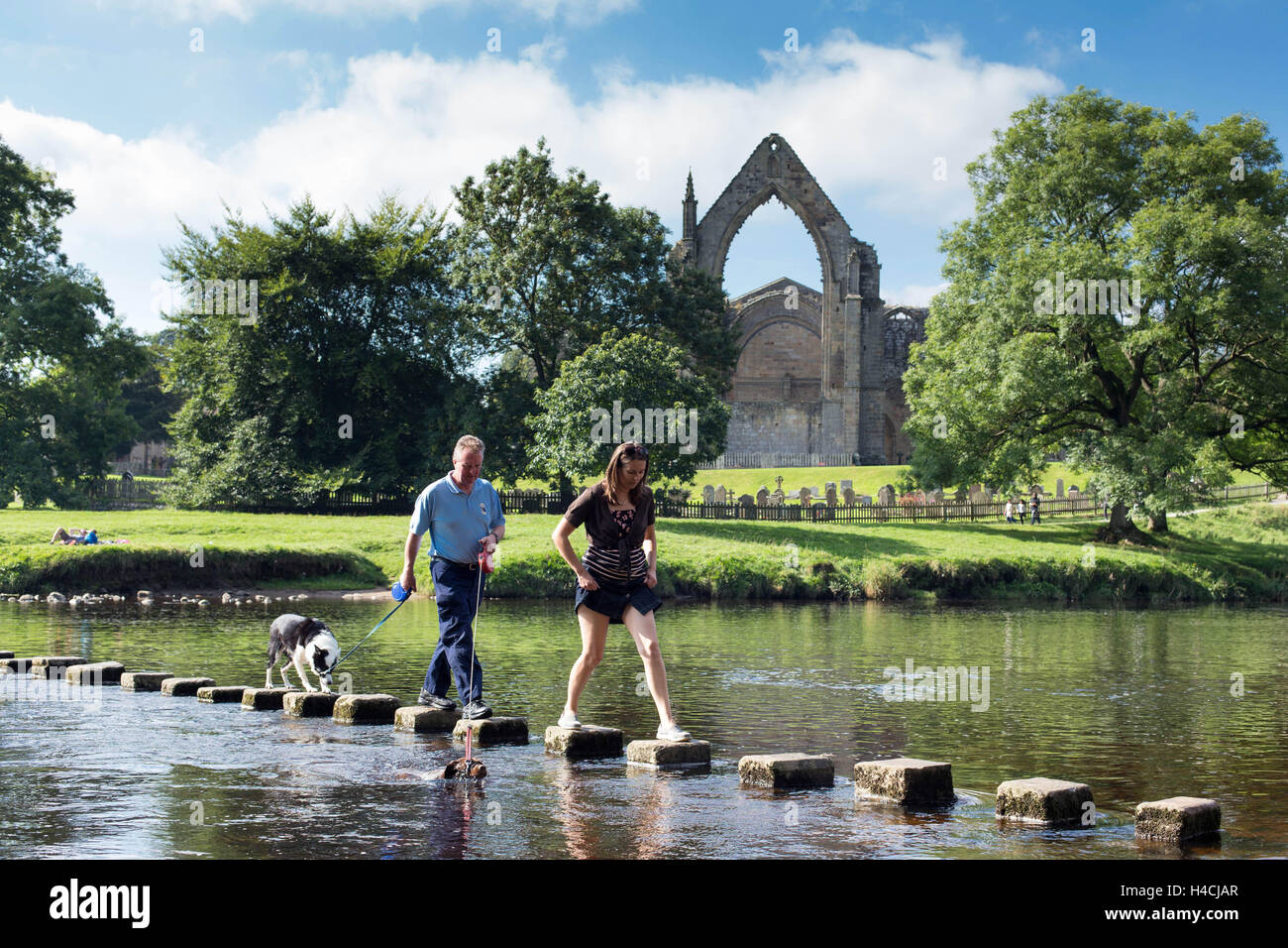 Members of the public cross the River Wharfe along with their dogs, whilst enjoying the sunshine, at Bolton Abbey, - Stock Image