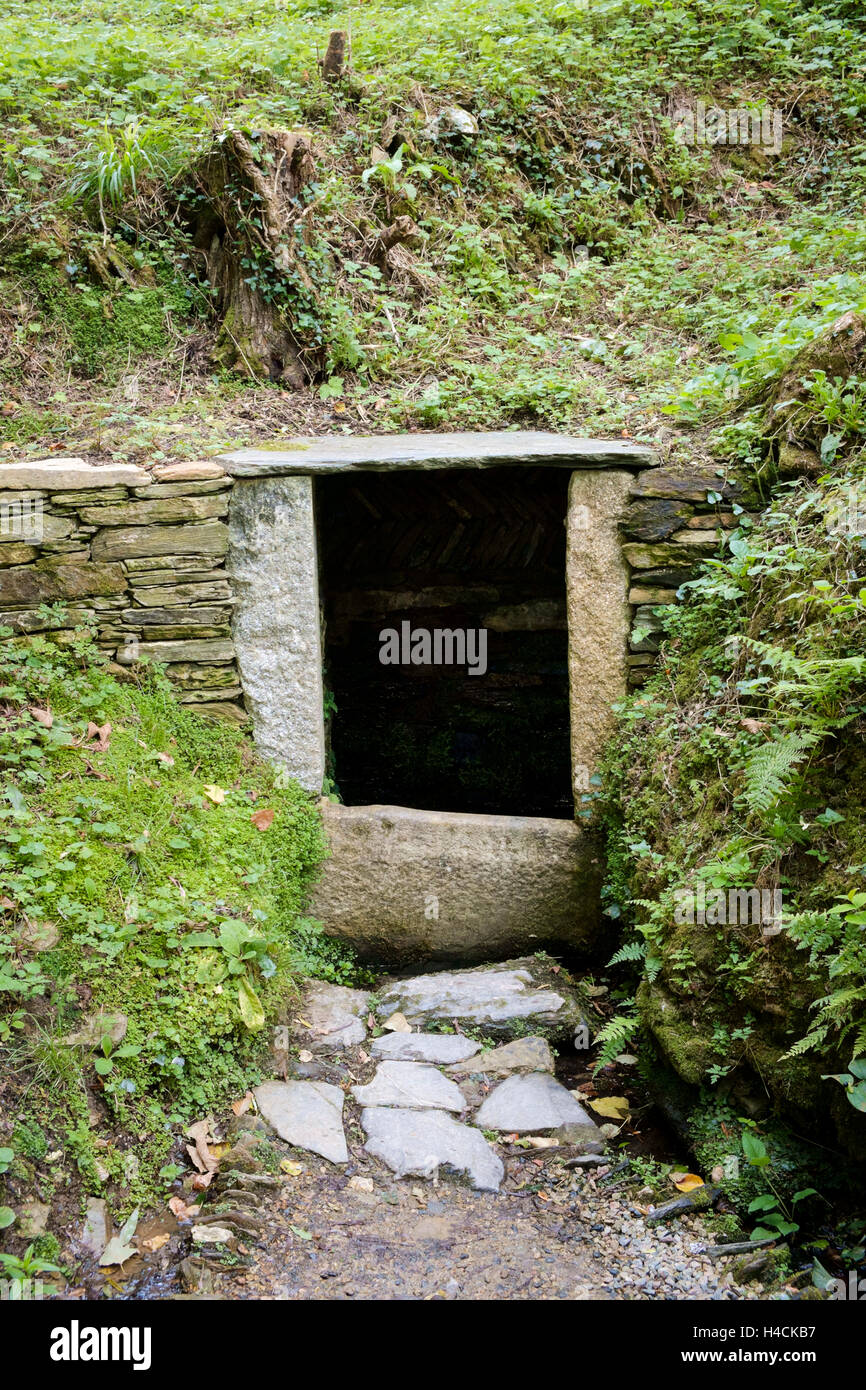 Holy Well or Sacred Spring of St Just, St Just in Roseland, Cornwall, England, United Kingdom - Stock Image