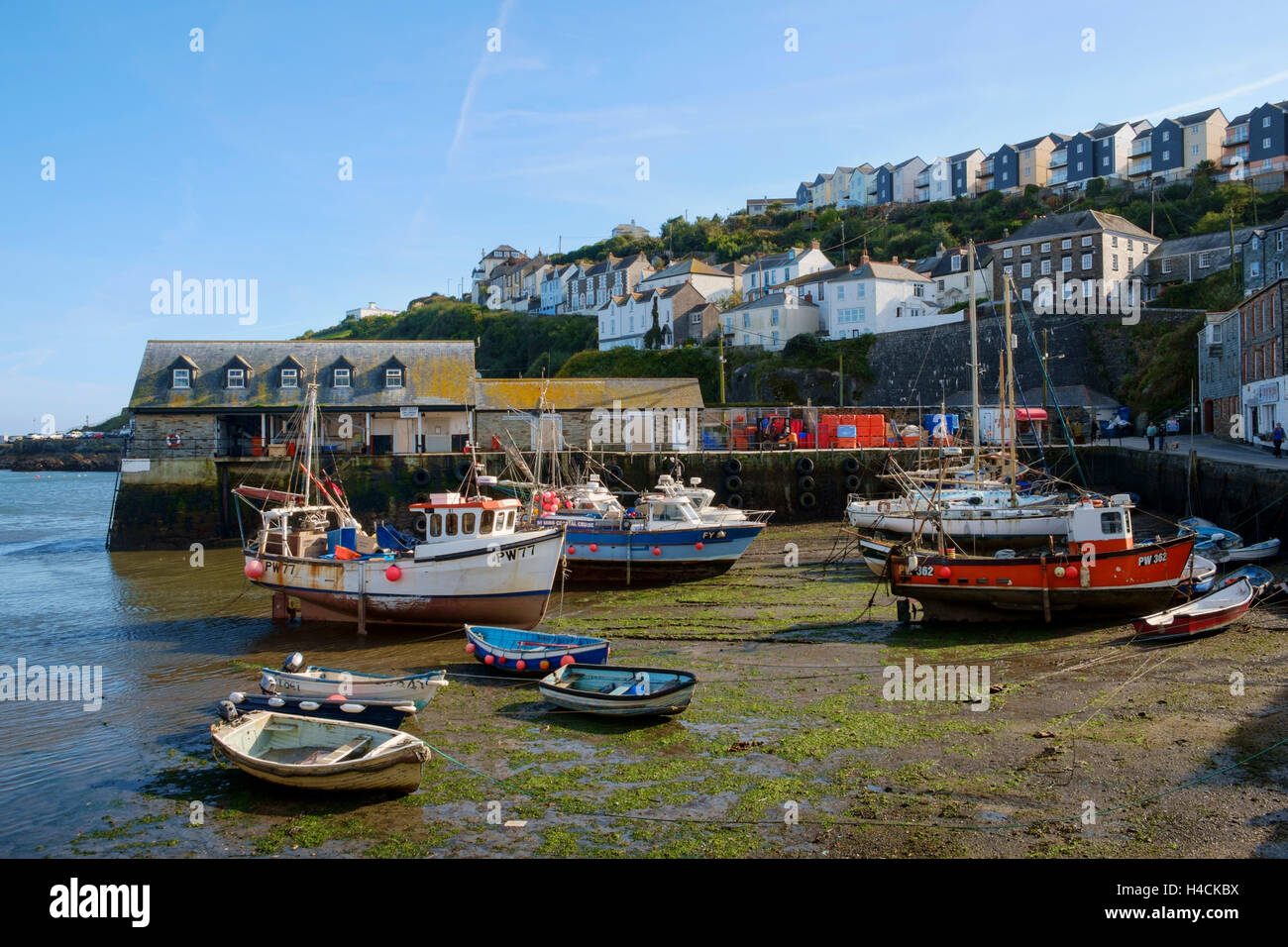 Mevagissey harbour with fishing boats at low tide, Cornwall, England, UK - Stock Image