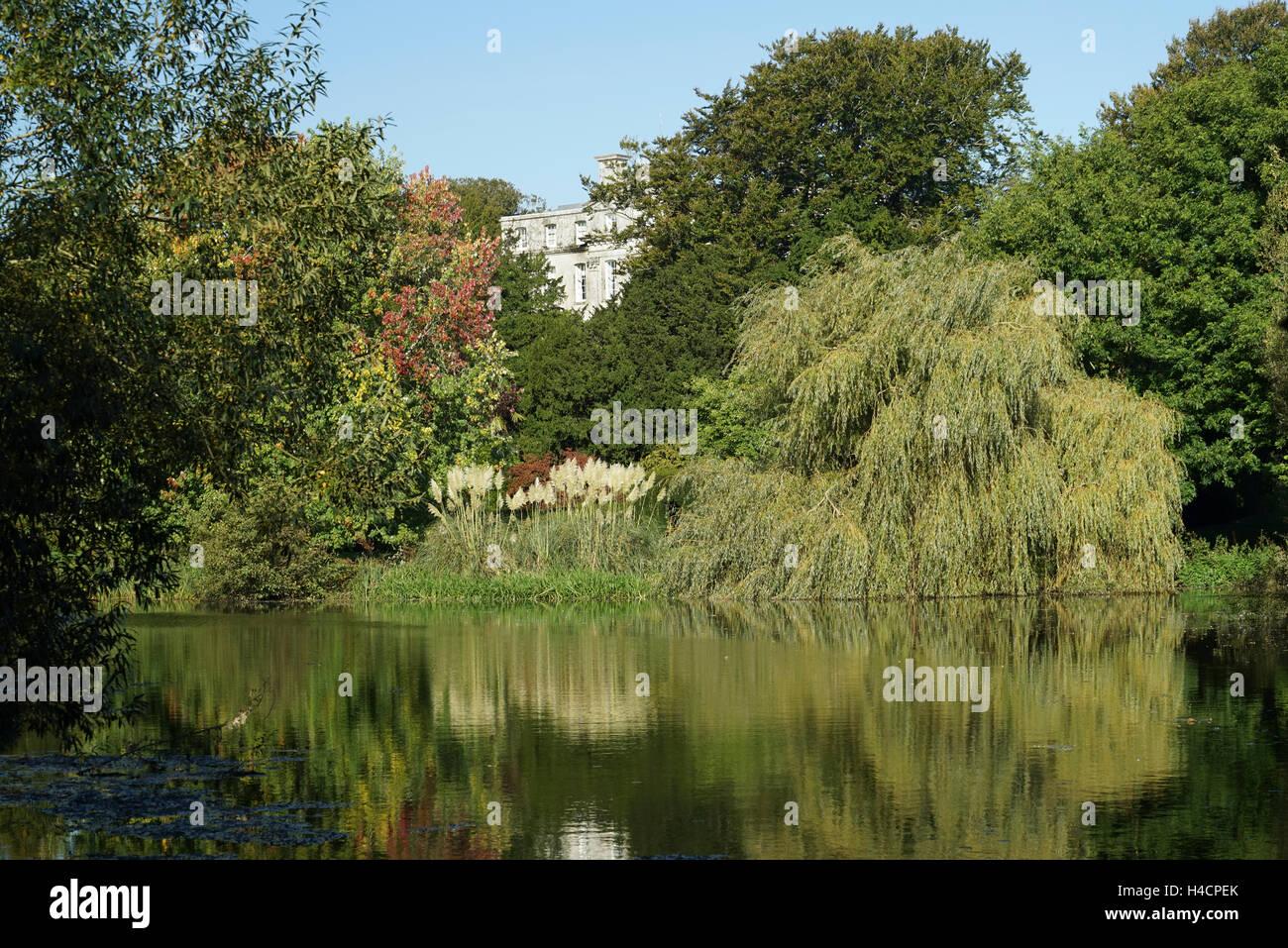 Reflections in the Kingston Maurward Lake, Dorchester, Dorset -1 - Stock Image