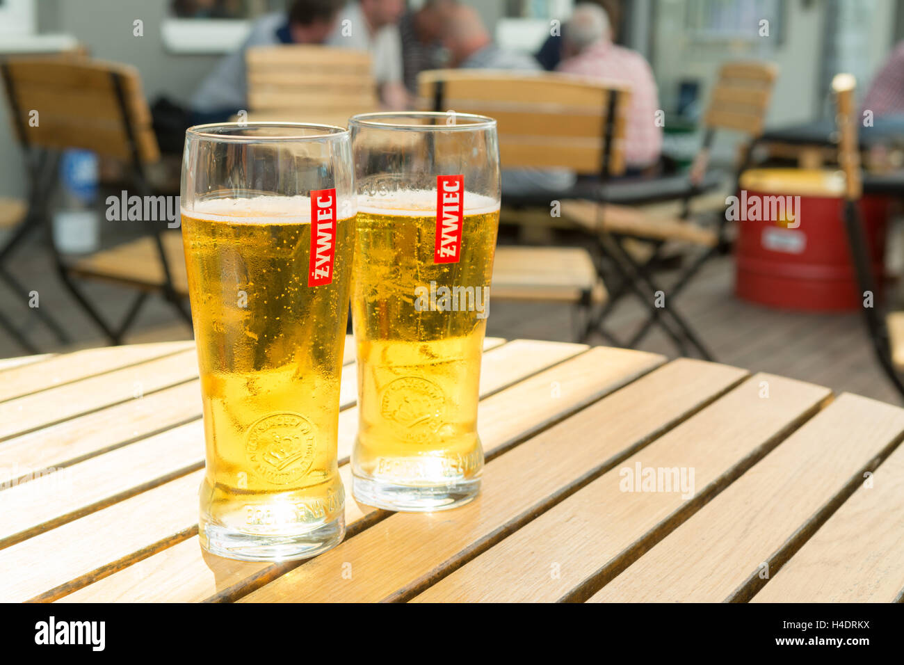 Polish Zywiec beers - on a table at Wydzial Remontowy pub outside the historic Gdansk Shipyard gate no 2, Gdansk, - Stock Image