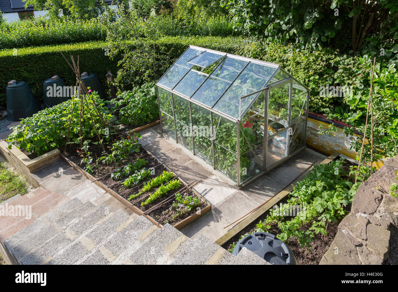 Garden with greenhouse and vegetable patch, Wales, UK - Stock Image