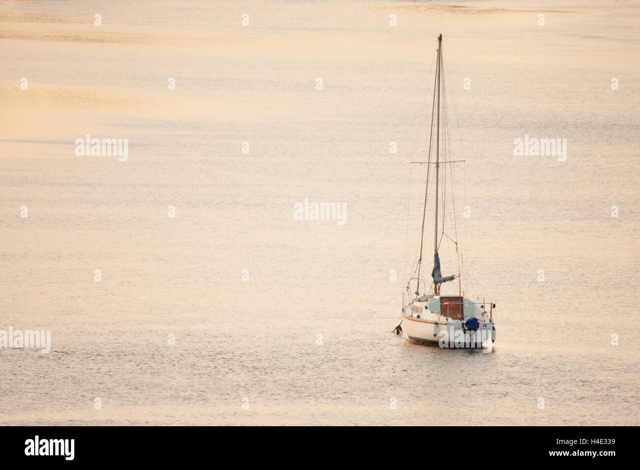 White sail boat moored in the estuary with golden evening light catching the water, a place of sanctuary, at Alnmouth - Stock Image