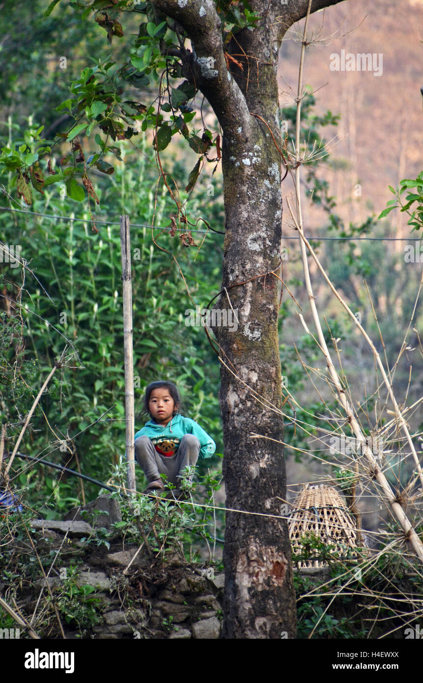 A young girl watches trekkers prepare for a morning on the trail, Rumpur village, Solukhumbu, Nepal - Stock Image