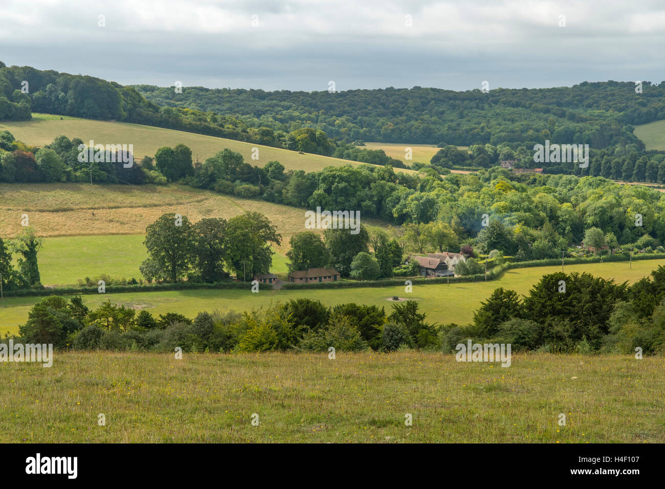 Watlington Hill, The Chilterns, Oxfordshire, England Stock Photo