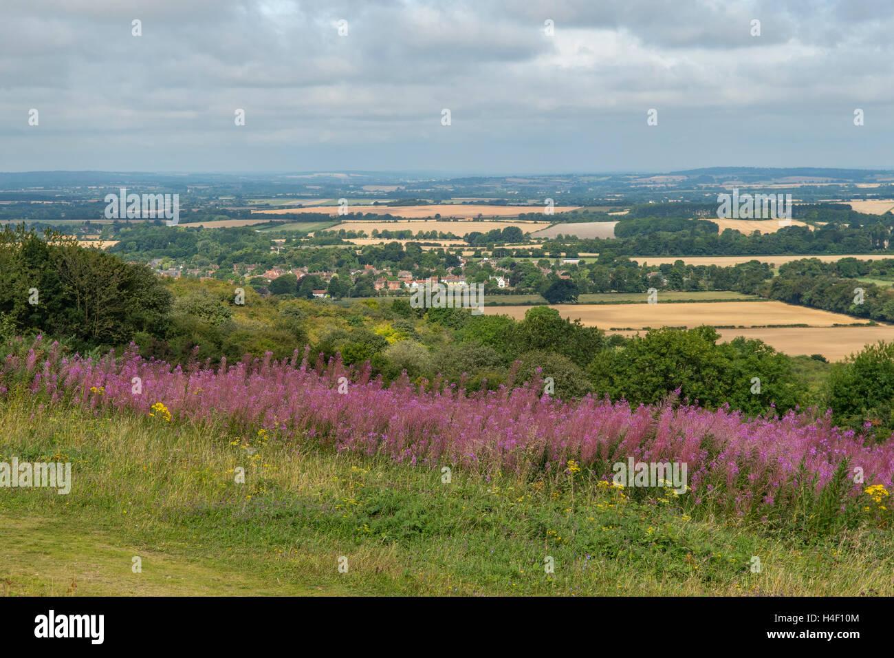 Watlington Hill, The Chilterns, Oxfordshire, England - Stock Image