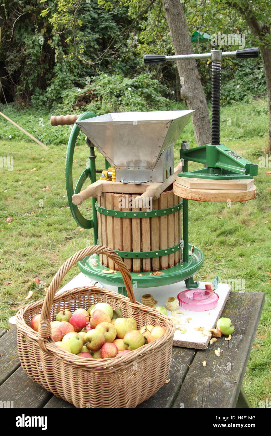 An apple press in a communty orchard at an annual day event near Sheffield, on a fine autumn day, England UK - Stock Image