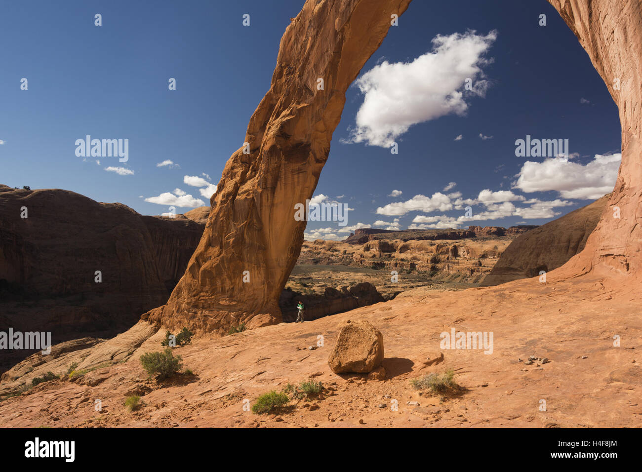 Utah, Potash-Lower Colorado River Scenic Byway, Corona Arch - Stock Image