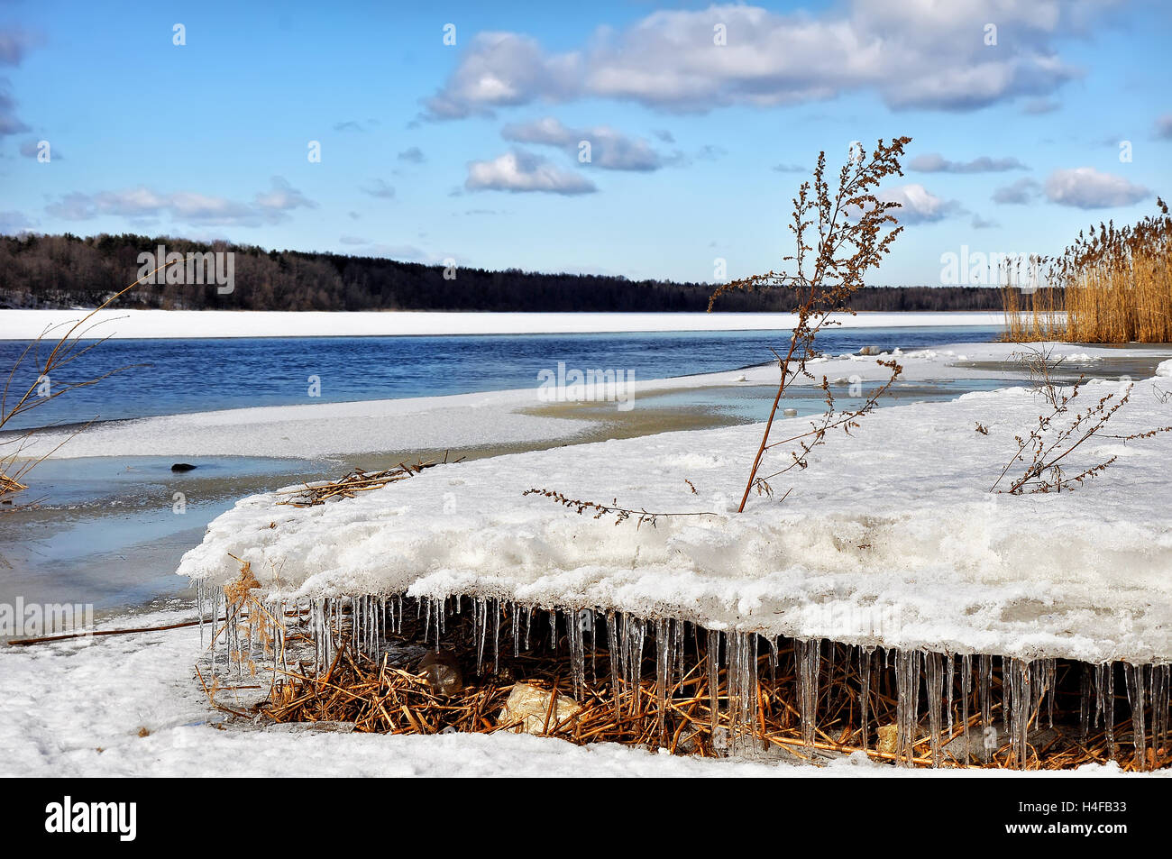 The Neva river in the Leningrad region. - Stock Image