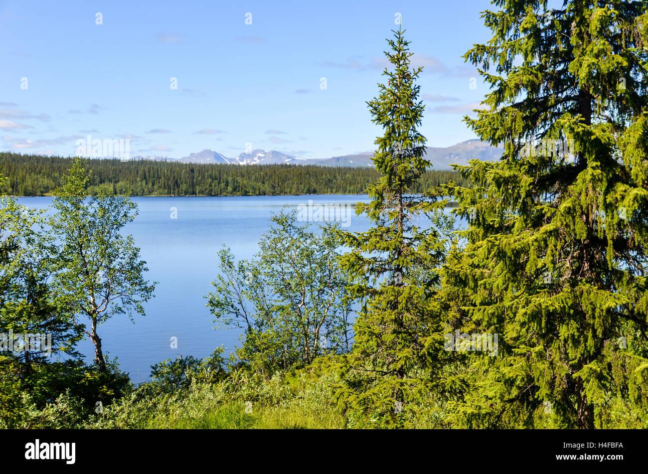 View on Marsfjällen mountain range in northern Sweden, over Rekansjön lake - Stock Image