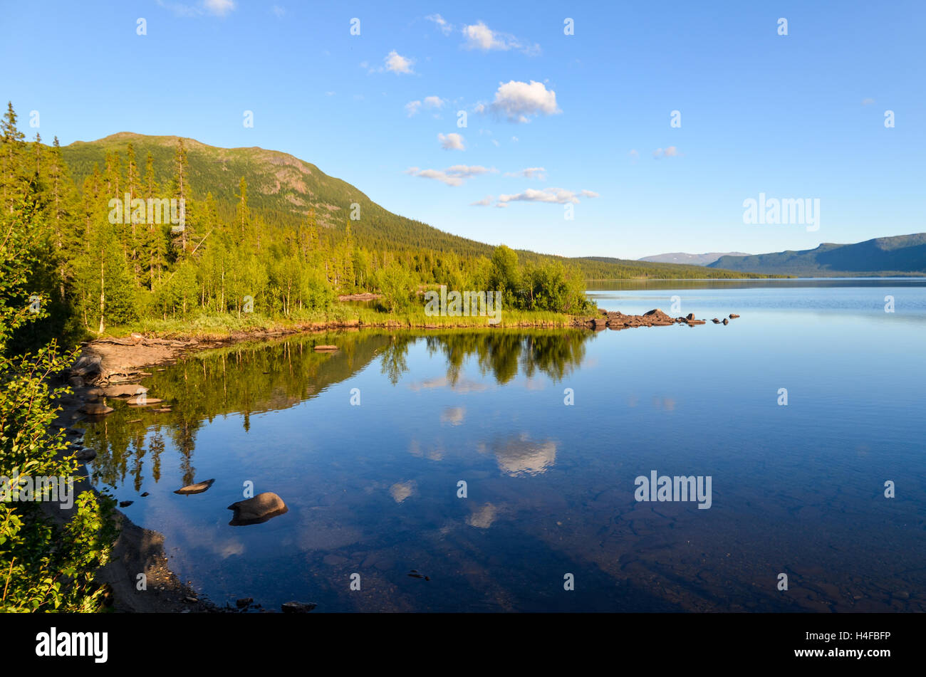 Sunset light on trees in Northern Sweden by a lake near the Blue Road - Stock Image