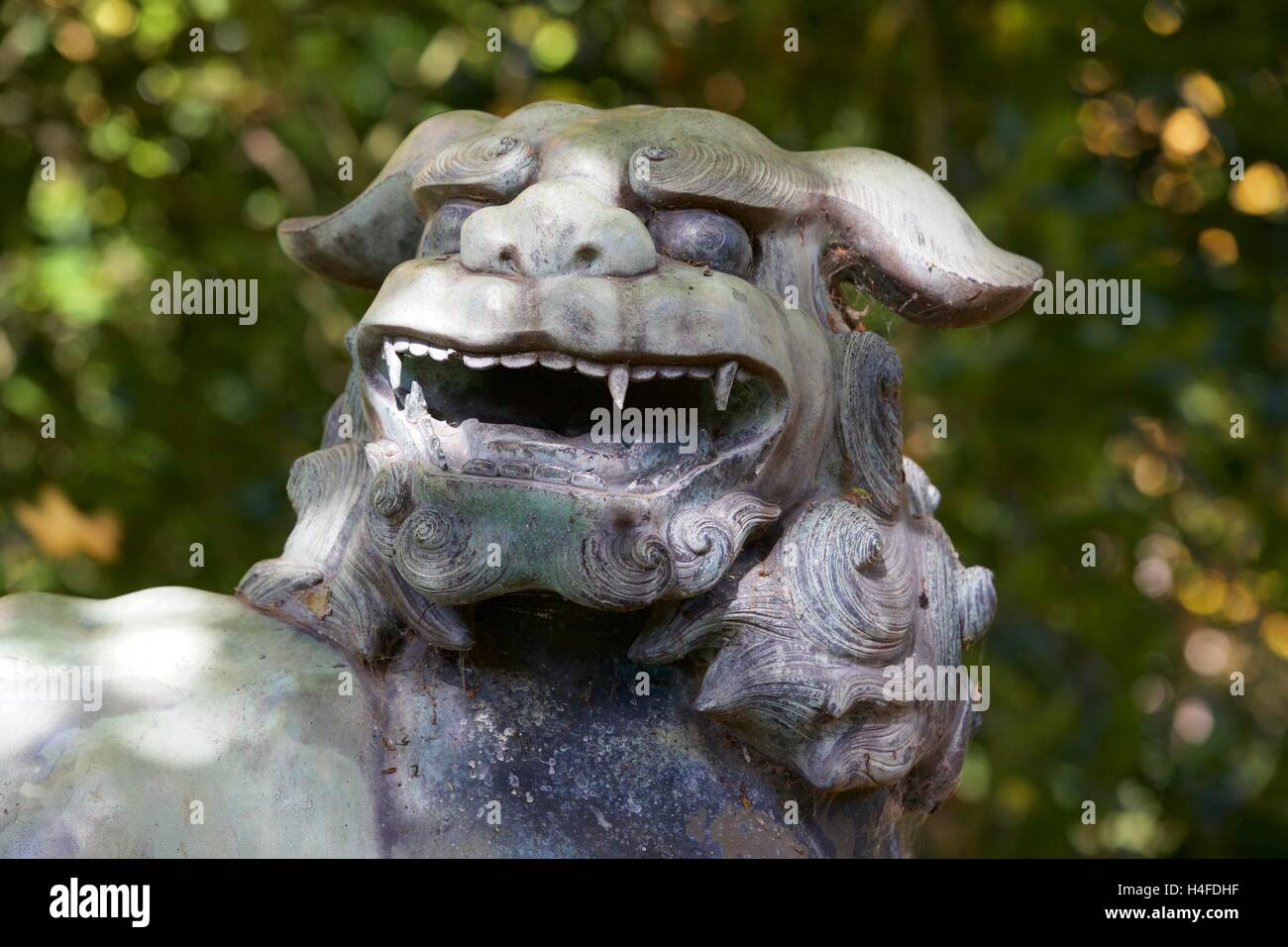 Foo Dog statue in Batsford Arboretum - Stock Image