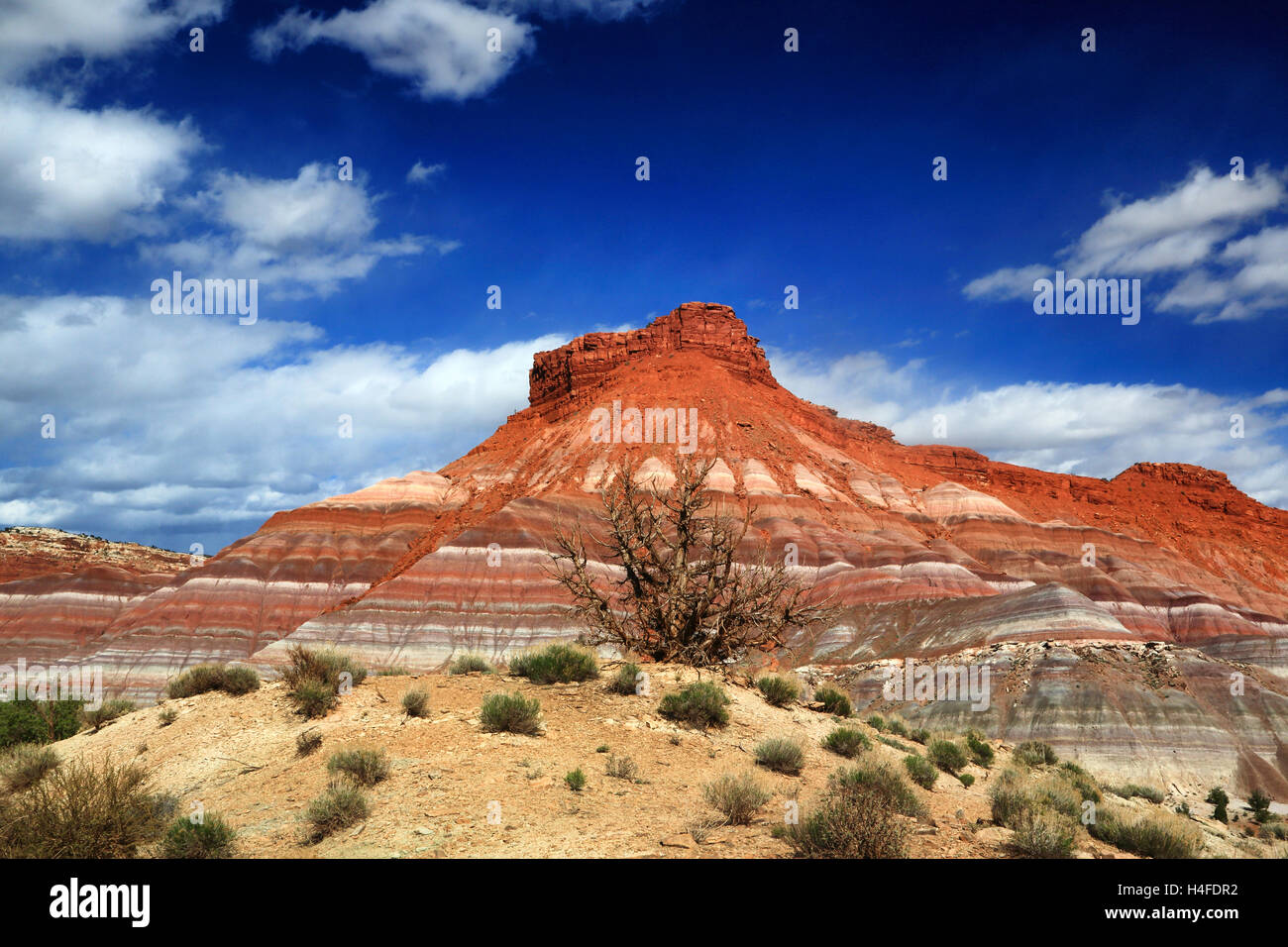 A cliff or butte in Escalante Grand Staircase National Monument in Utah looms over the desert. Stock Photo
