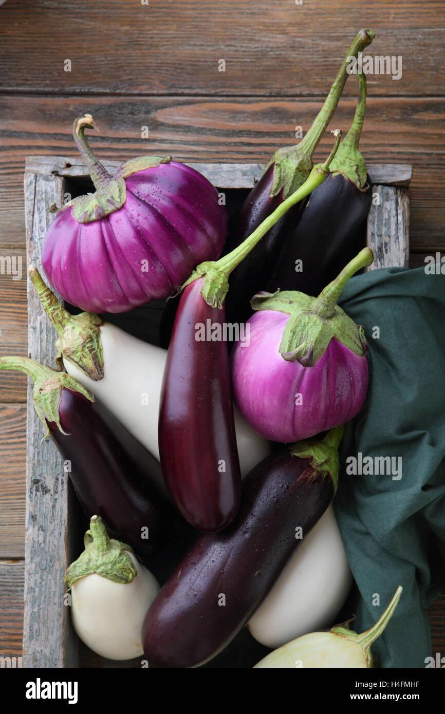 Variety fresh eggplants - Stock Image