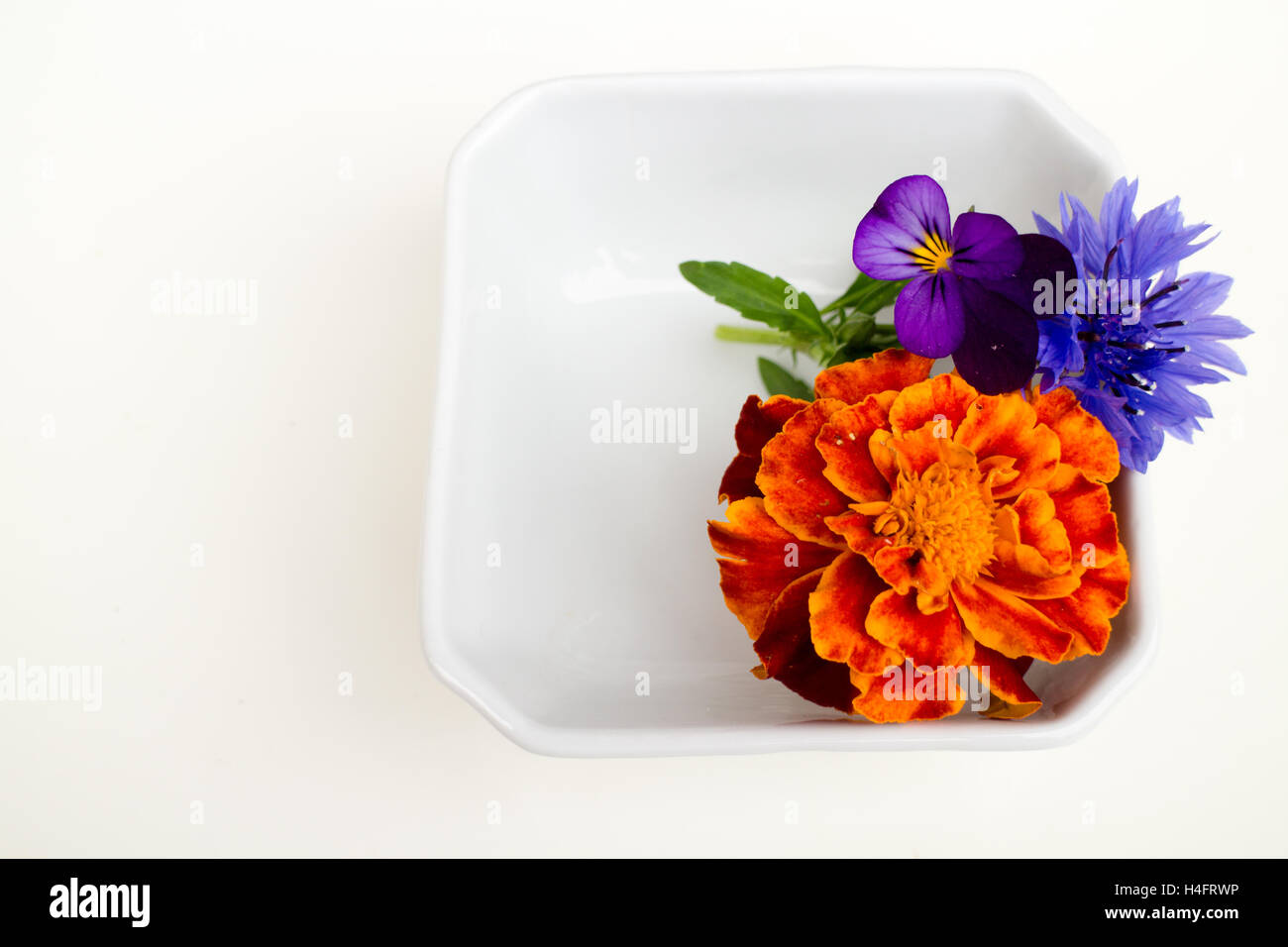Edible Flower Arrangements Stock Photos & Edible Flower Arrangements ...