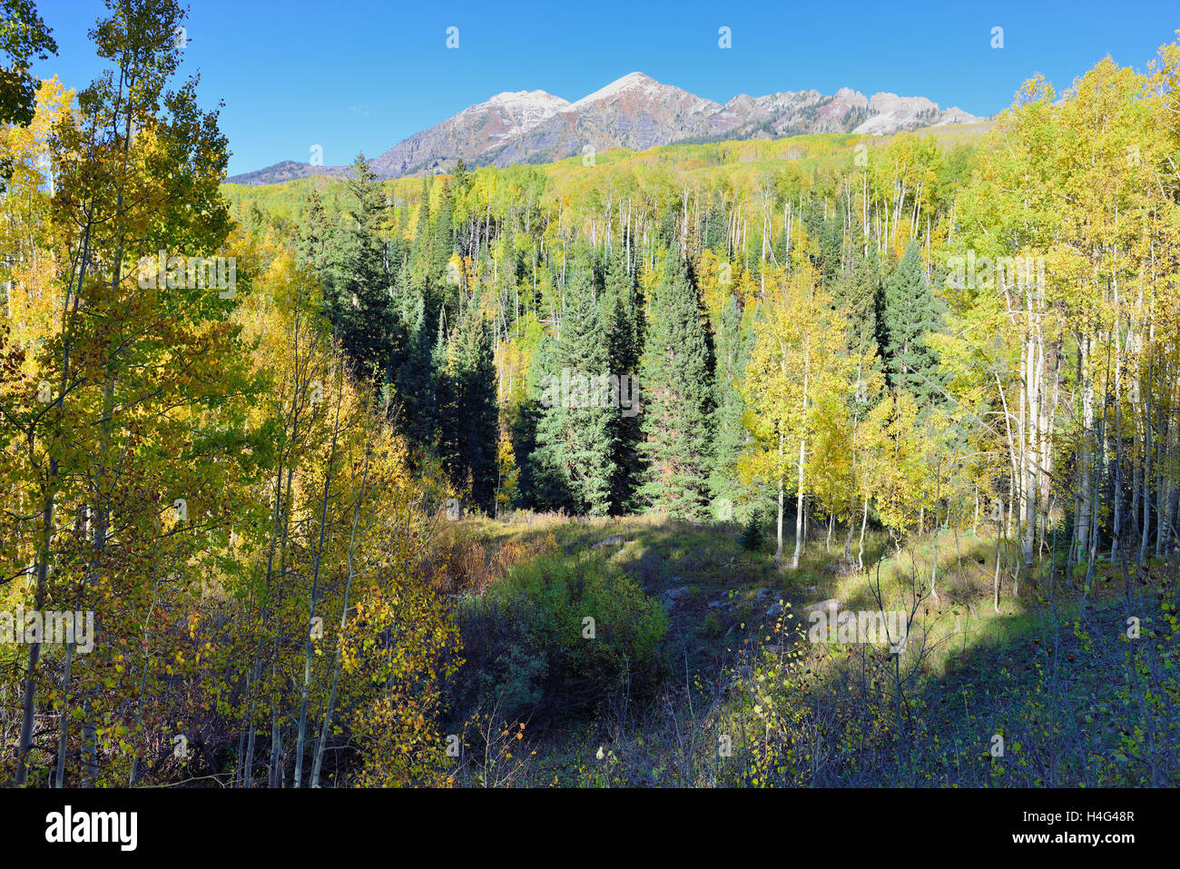 landscape view of the colorful alpine scenery with snow covered mountains during foliage season at Kebler and Ohio Stock Photo