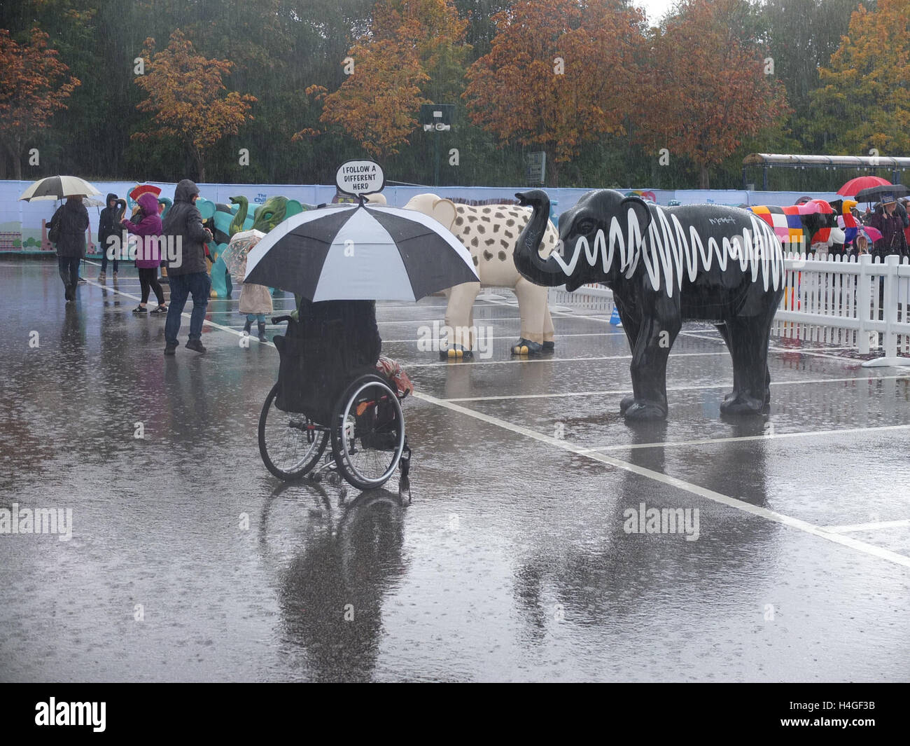 Meadowhall, Sheffield, UK. 16th October 2016. UK Weather: Despite heavy rain, a crowd of people attends the Herd Stock Photo
