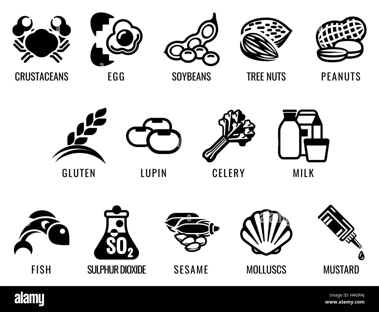 Food allergy icons including the 14 food allergies outlined by the EU Food Information for Consumers Regulation Stock Photo
