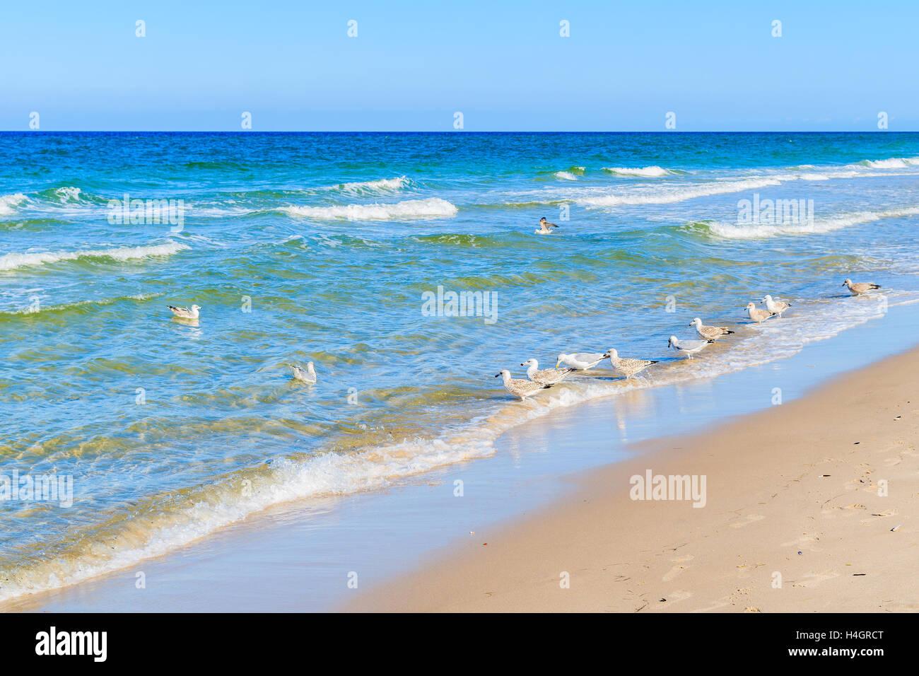 Beach Sylt Island Schleswig Holstein Germany Stock Photos Beach
