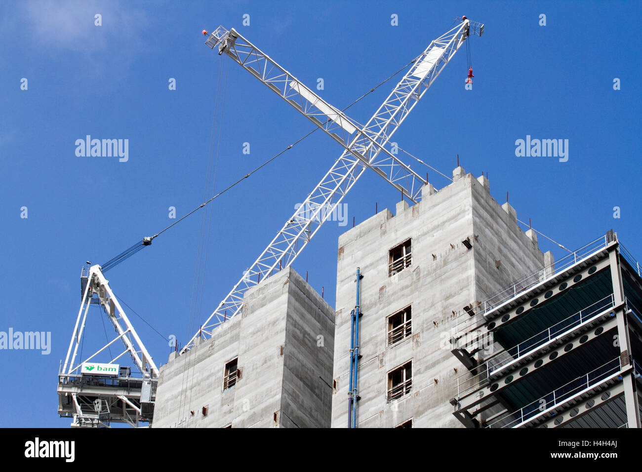 Affordable homes under construction, UK - Stock Image