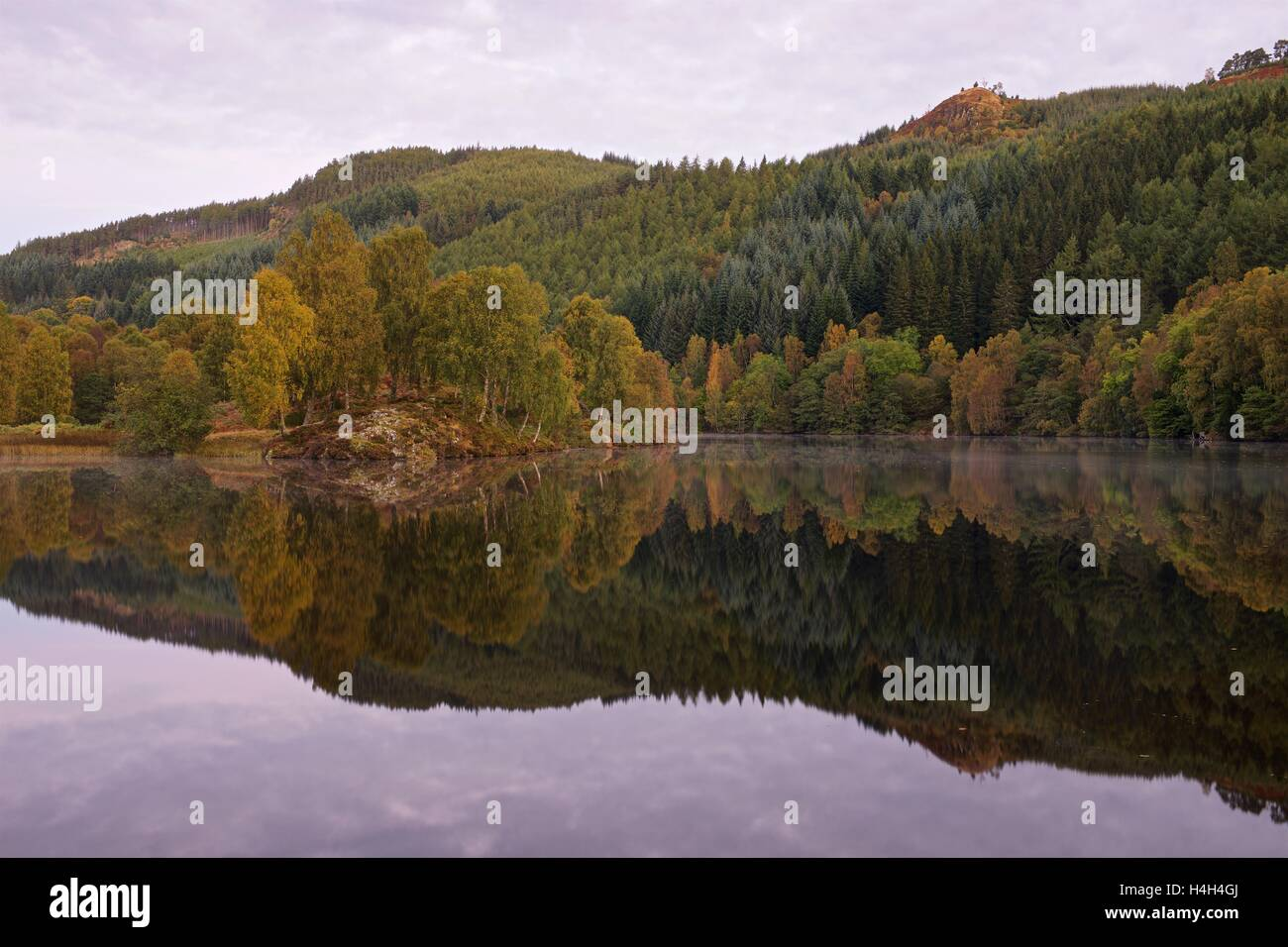 A colour image of the Autumn colours in Perthshire - Stock Image