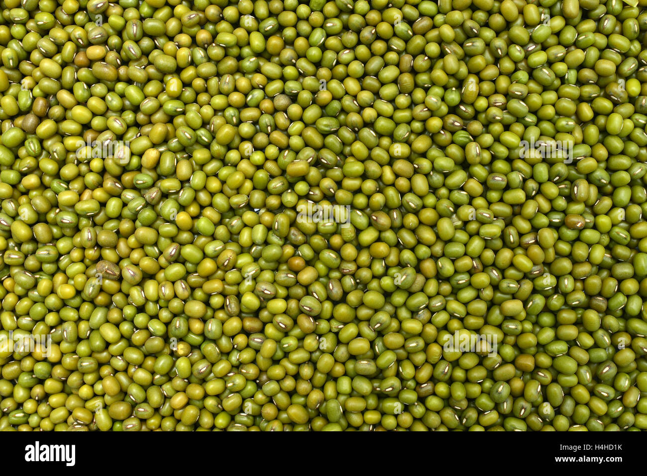 mung green beans texture pattern food background - Stock Image