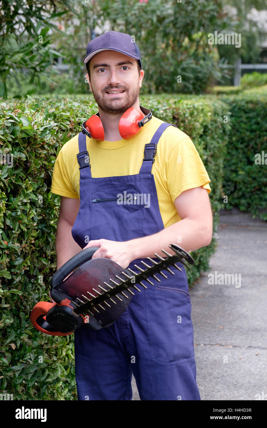 Gardener using an hedge clipper in the garden - Stock Image